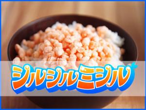【速報】8月17日 テレビ朝日「シルシルミシル」で紹介されたご飯のお供