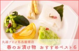 春のお漬物オススメベスト6 from丸越 アピタ名古屋南店